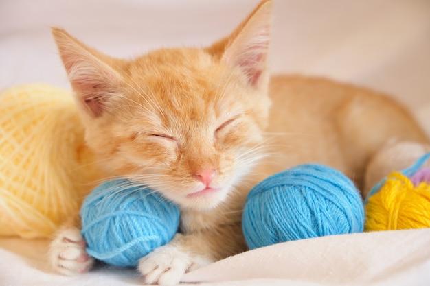 Śliczny rudy kot i różnokolorowe kulki nici na tle białej pościeli, kotek śpi słodko po zabawie nitkami na łóżku