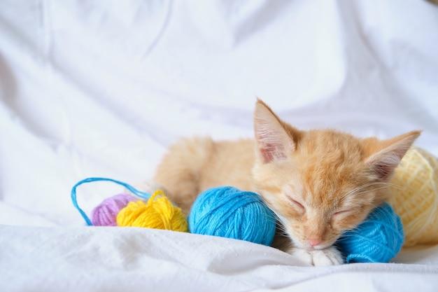 Śliczny rudy kot i różnokolorowe kulki z nici, kotek śpi na łóżku
