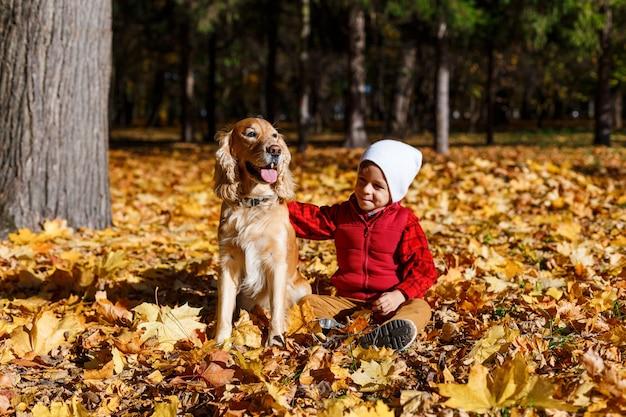 Śliczny, szczęśliwy, biały chłopiec w czerwonej koszulce uśmiechający się i bawiący się z psem wśród żółtych liści. małe dziecko zabawy w parku jesień. koncepcja przyjaźni dzieci i zwierząt, szczęśliwa rodzina