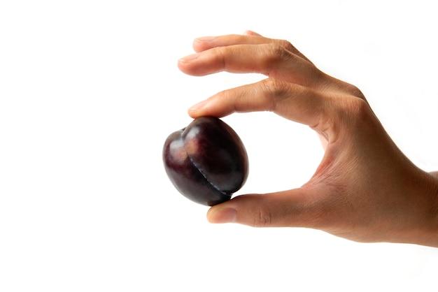 Śliwka czereśniowa w dłoni wyjęta z łodygi