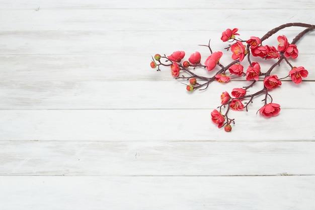 Śliwkowy kwiat kwitnie na białej drewnianej desce