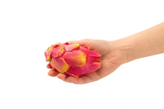 Słodka smakowita smok owoc, pitaya w kobiety ręce odizolowywającej lub.