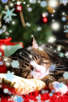 Słodki kot leżący na dywanie ze świątecznym wystrojem