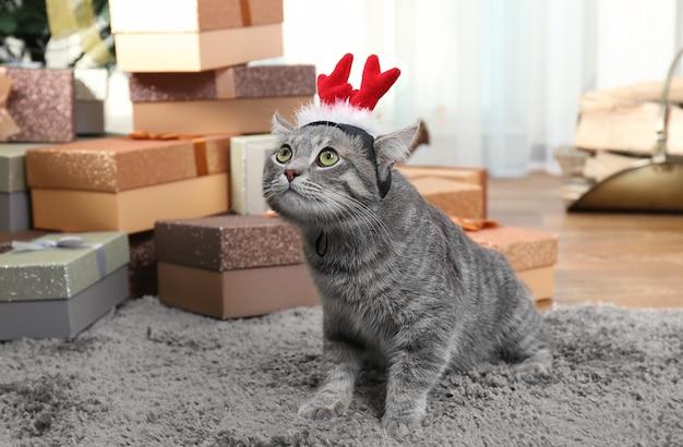 Słodki kot ze świątecznymi rogami renifera na dywanie w domu