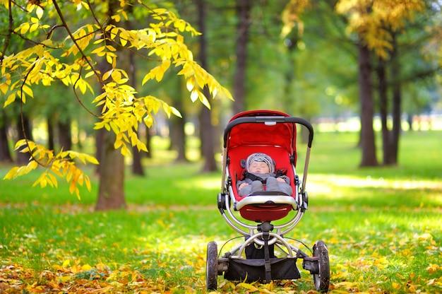 Słodki mały chłopiec śpi w wózek w parku jesienią