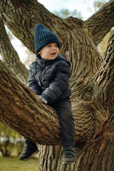 Słodki mały chłopiec w niebieskiej ciepłej kurtce i dzianinowej czapce, siedzący na gałęzi wielkiego drzewa