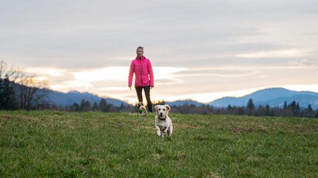 Słodki pies biegnie w kierunku zabawki z piłką, aby złapać ją na pięknej łące, a jej właściciel stoi za nią.