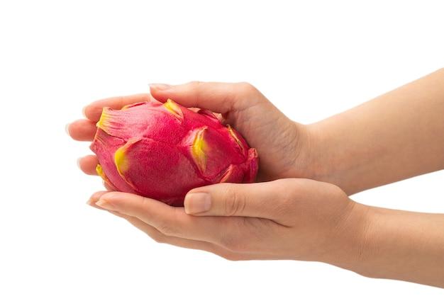 Słodki smaczny owoc smoka lub pitaya w ręce kobiety na białym tle.