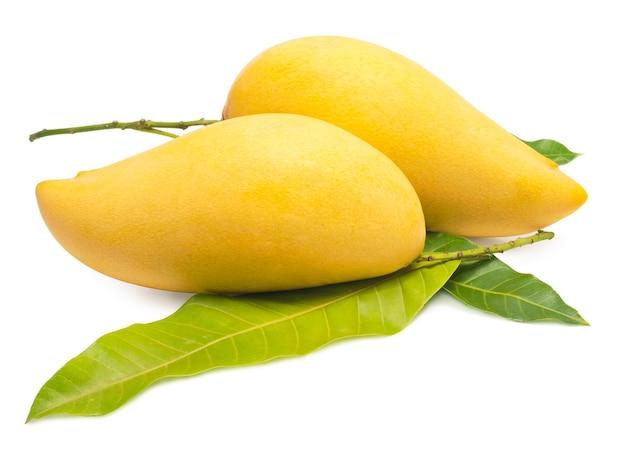 Słodki złoty mango na białym tle barracuda mango.