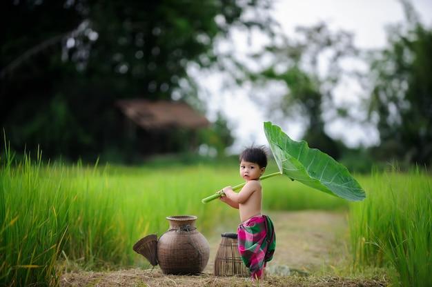 Słodkie dziecko dziecko na zielonym polu ryżu