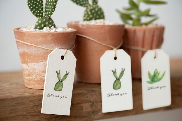 Słodkie kaktusy w doniczkach z terakoty z papierowymi etykietami