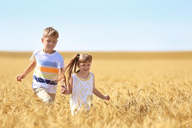 Słodkie małe dzieci biegające w polu pszenicy w letni dzień