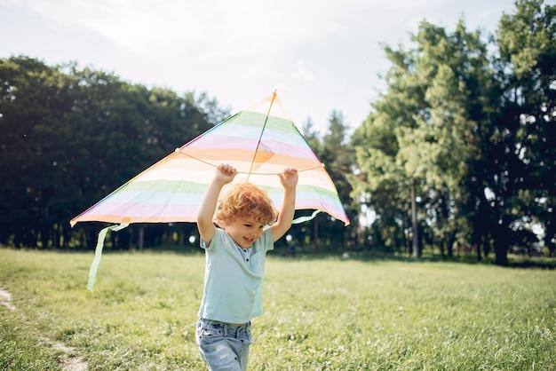 Słodkie małe dziecko w polu lato z latawcem
