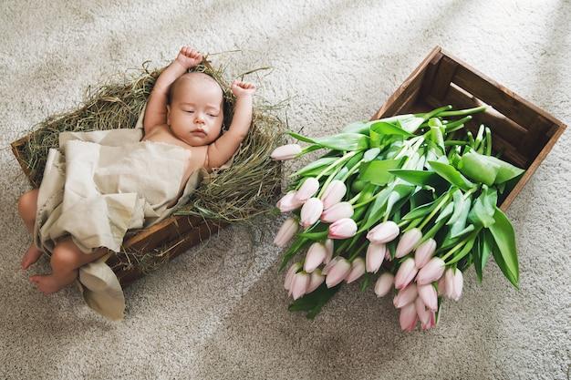 Słodkie maleństwo leży w drewnianym pudełku wypełnionym sianem i stertą różowych tulipanów