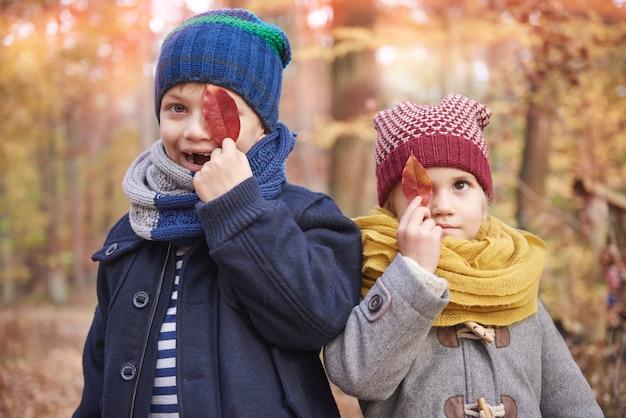 Słodkie rodzeństwo w lesie