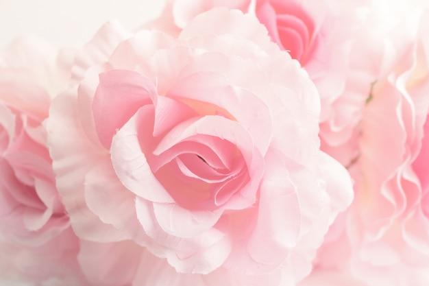 Słodkie róże kolor w miękkim stylu na tle
