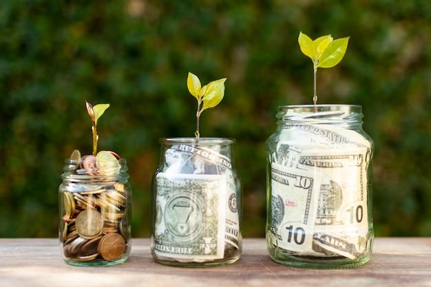 Słoiki wypełnione pieniędzmi i roślinami na nich