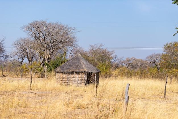 Słomiana błota i drewniana chatka z dachem krytym strzechą w buszu. lokalna wioska w wiejskim strip caprivi strip, najbardziej zaludnionym regionie w namibii, w afryce.