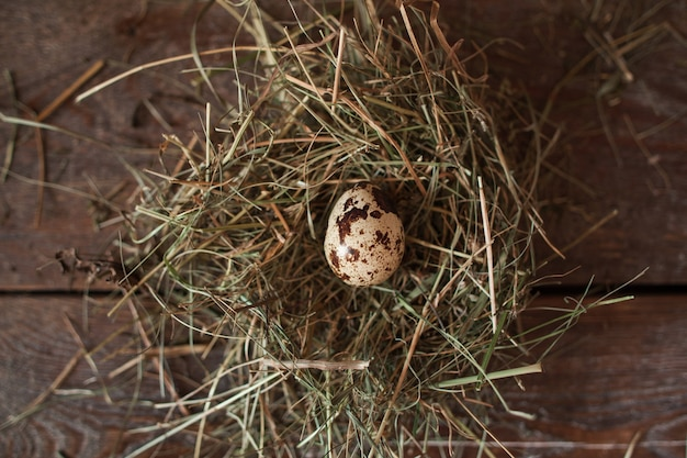 Słomiane gniazdo z jednym jajkiem na stole leżącym na płasko.