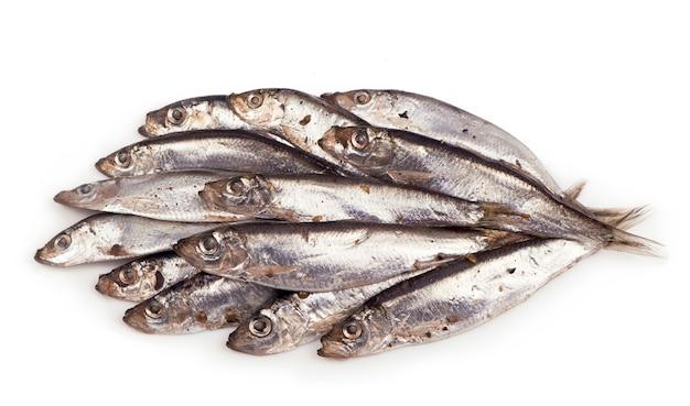 Słona ryba szprot na białym tle na białej powierzchni