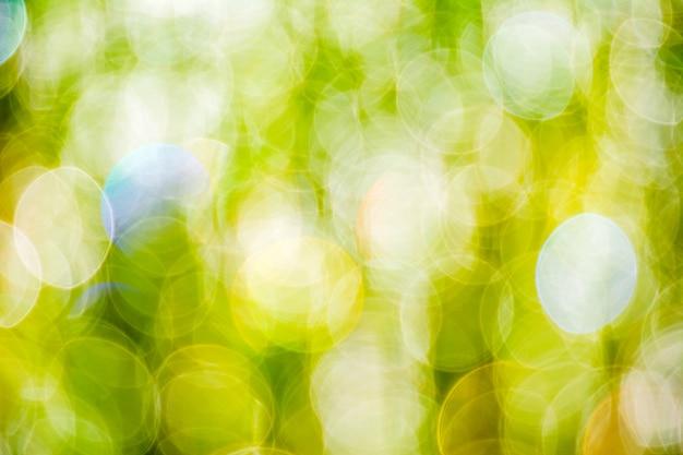 Słońce promienieje na łąkowej trawie bokeh zamazanego tło