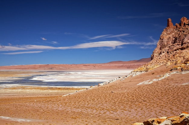 Słone jezioro salar de tara, chile