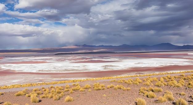 Słone mieszkania laguna colorada w potosi boliwia ameryka południowa
