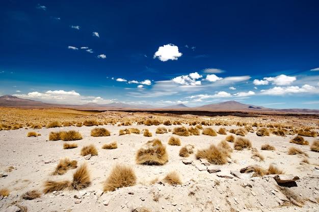 Słoneczna góra boliwijska pustynia z suchymi krzakami