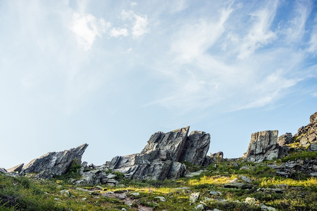 Słoneczna góralska sceneria z zaostrzonymi kamieniami o nietypowym kształcie. niesamowity malowniczy górski krajobraz z dużym, pękniętym spiczastym kamieniem zbliżenie wśród trawy pod błękitnym niebem w słońcu. ostre skały z pęknięciami