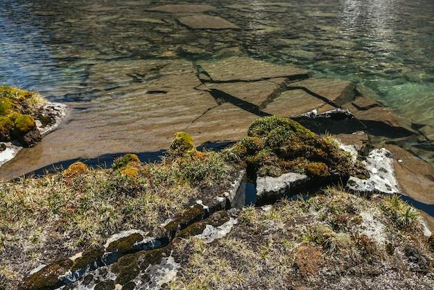 Słoneczna piękna sceneria z mchami i trawami na kamieniach w pobliżu krawędzi górskiego jeziora w słońcu. malowniczy krajobraz z roślinnością górską w pobliżu brzegu jeziora polodowcowego. czysta woda jeziora lodowcowego.