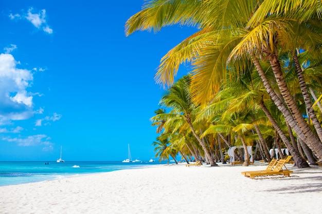 Słoneczna tropikalna karaibska rajska plaża z białym piaskiem i palmami