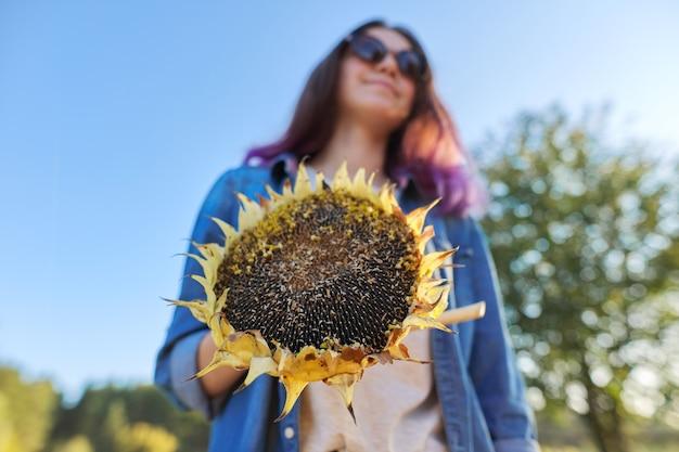 Słonecznik roślina dojrzałe koło z czarnymi nasionami w ręku. naturalny krajobraz, zachód słońca, niebo, złota godzina, koncepcja zdrowej naturalnej żywności