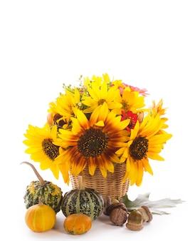 Słoneczniki i dynie, orzechy włoskie, żołędzie na białym tle