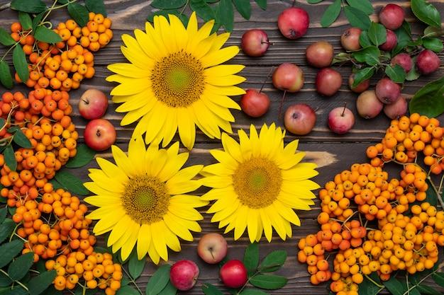 Słoneczniki, jagody jarzębiny i czerwone jabłka na deskach z ciemnego drewna. koncepcja jesień.