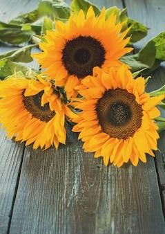 Słoneczniki na stole