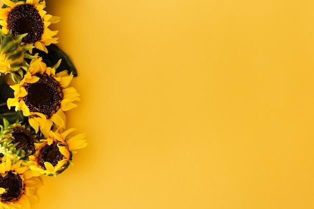 Słoneczniki na żółtym tle