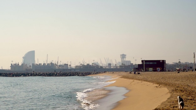 Słoneczny dzień barcelona city bay beach z widokiem na port. zwolnione tempo