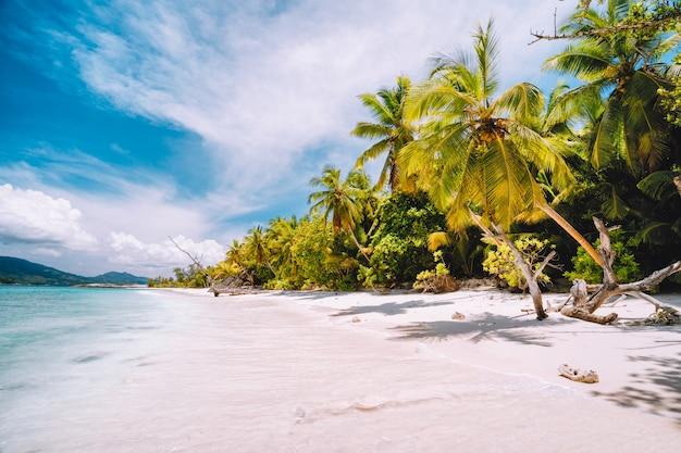 Słoneczny dzień na rajskiej plaży. biały piasek, palmy i błękitna oceaniczna laguna.