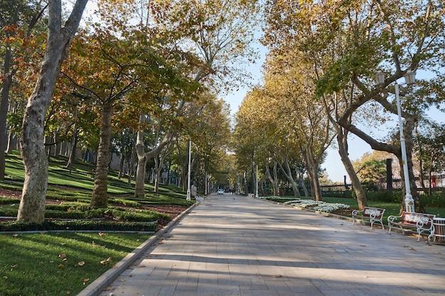 Słoneczny dzień w jesiennym parku w stambule w turcji