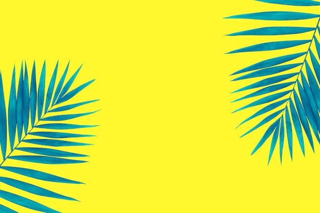 Słoneczny. egzotyczne niebieskie liście palm tropikalnych na białym tle na jasnym żółtym tle. projekt zaproszeń, ulotek. abstrakcyjne szablony do plakatów, okładek, tapet z copyspace dla tekstu.