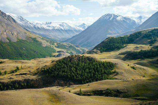 Słoneczny górski krajobraz z zielonym lasem na wzgórzach na tle dużych ośnieżonych gór pod zachmurzonym niebem. kolorowa alpejska sceneria z drzewami iglastymi na wzgórzach i wielkimi ośnieżonymi górami w słońcu.