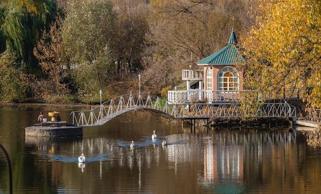 Słoneczny jesienny wieczór nad błękitnym jeziorem