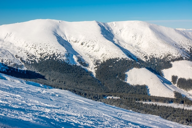 Słowacja. niskie tatry. freeride stok narciarski i ośnieżone zimowe szczyty przy słonecznej pogodzie