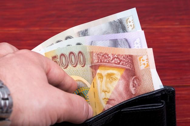 Słowacka korona pieniężna w czarnym portfelu