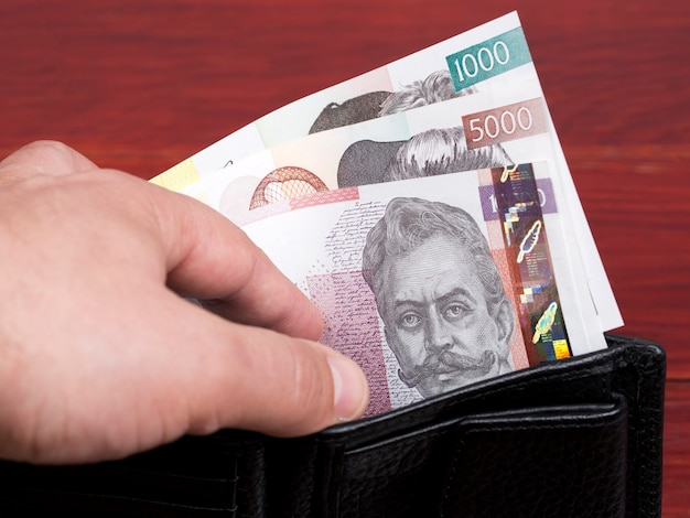 Słoweński tolar pieniężny w czarnym portfelu
