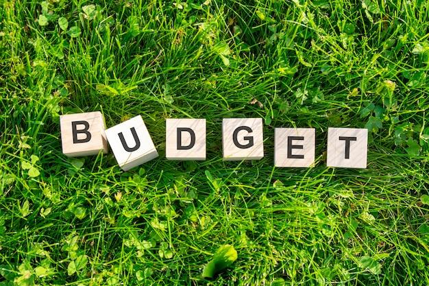 Słowo budżet jest napisane na drewnianych kostkach. klocki leżą na naturalnej zielonej trawie