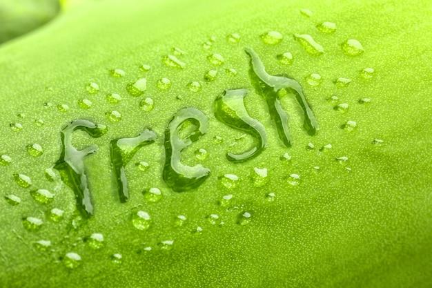 Słowo fresh i krople wody na zielonym liściu, zbliżenie