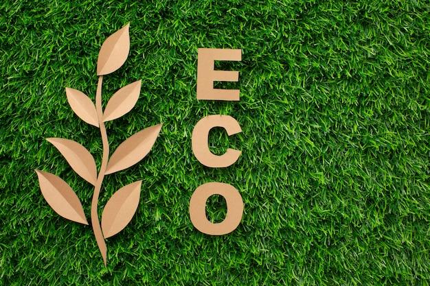 Słowo liść i eko
