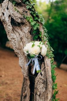 Ślubne róże i piwonie na weselu z kory drzewa oliwnego