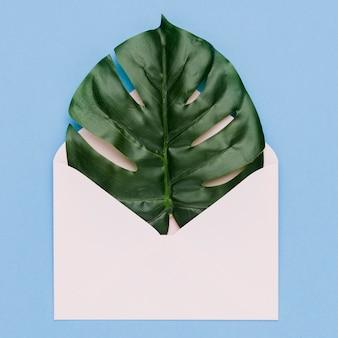 Ślubny pojęcie z palmowym liściem w kopercie